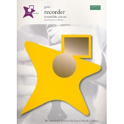 Music Medals Gold : Recorder Ensemble Pieces for 2-4 recorders score