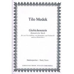 Medek, Tilo: Giebichenstein : f├╝r 2 Piccolofl├Âten, 2 Violen, 2 Violoncelli und 2 Kontrab├ñsse Partitur und Stimmen