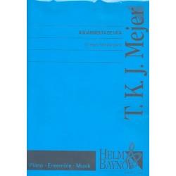 Mejer, T.K.J.: Aguardienta de vita : für Klavier zu 8 Händen Partitur und Stimmen