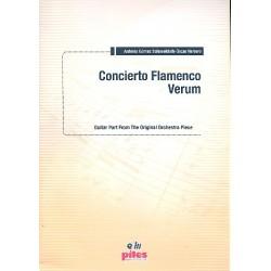 Gómez Schneekloth, Antonio: Concierto Flamenco verum para guitarra flamenca y orquesta guitarra