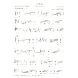 Grieg, Edvard Hagerup: Peer-Gynt-Suite Nr.1 op.46 : für Zupforchester Gitarre