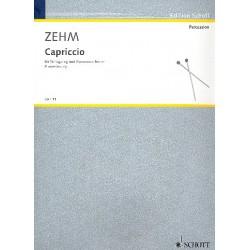 Zehm, Friedrich: Capriccio für Schlagzeug und Kammerorchester : Klavierauszug