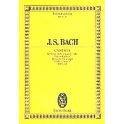 Bach, Johann Sebastian: Schweigt stille plaudert nicht Kantate Nr.211 BWV211 Studienpartitur