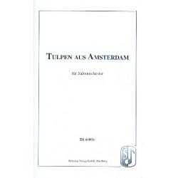 Arnie, Ralf: Tulpen aus Amsterdam : für Salonorchester