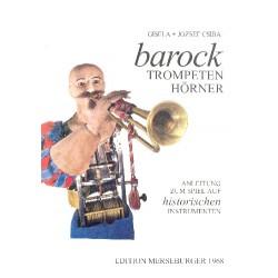 Csiba, Gisela: Barocktrompeten Barockhörner : Anleitung zum Spiel auf historischen Instrumenten