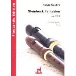 Caldini, Fulvio: Steinbock Fantasien op.116g : f├╝r 2 Blockfl├Âten (ST/TB) Spielpartitur