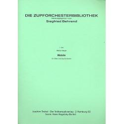 Braun, G├╝nter: Mobile : f├╝r Oboe und Zupforchester Partitur
