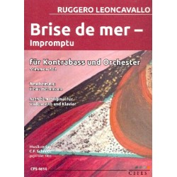 Leoncavallo, Ruggero: Brise de mer : f├╝r Kontrabass und Streichorchester Stimmensatz (solo-3-2-1-1-1)