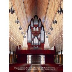 Puzzle Organo Fratelli Ruffatti 29x41cm, 384 Teile