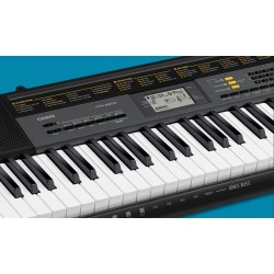 CASIO Keyboard Standard CTK-2500