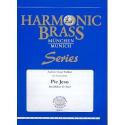 Lloyd Webber, Andrew: Pie Jesu : für 2 Trompeten, Horn, Posaune, Tuba und Orgel Stimmen