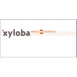 Klingende Kugelbahn Xyloba Erweiterungskasten mezzo - orchestra
